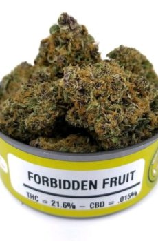 apple fruit, forbidden fruit weed,forbidden fruit, forbidden,fruit strain