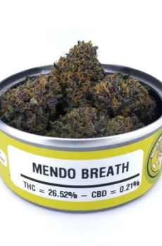 Mendo Breath,mendo breath strain,ogkb strain, jelly breath strain